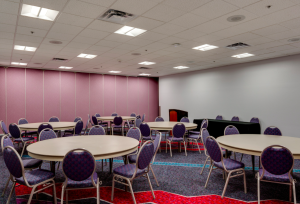 The Cree solution for the Convention Center Complex included the Cree CR Series architectural LED troffers; the CS14 LED linear luminaire; and the CR6, SR6 and LR6 LED downlights.