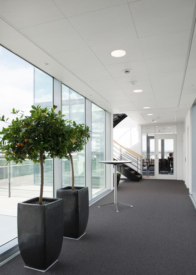 Ceiling Panels Achieve High Noise Reduction Coefficients Retrofit