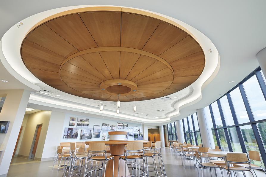 Veneer Ceiling Panels Improve Acoustics Retrofit