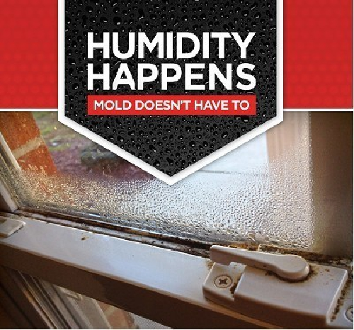 Continuing Education Course On Managing Moisture And Mold
