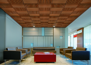 Metal And Wood Ceilings Absorb Sound Retrofit