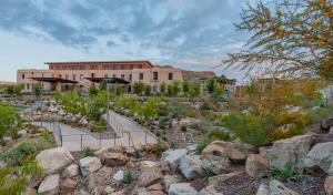 Sustainable landscape practices at the University of Texas at El Paso include vegetated arroyo and acequia bioswales that mimic the function of natural desert riparian corridors and the replacement of asphalt with a diverse native plant palette. PHOTO: Adam Barbe